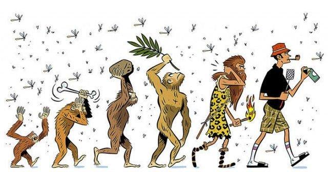 Sự tiến hoá của con người trong việc giết côn trùng!!