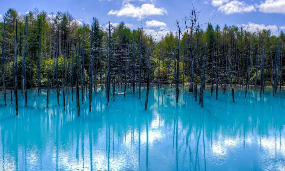 Hồ Blue Pond, Hokkaido, Nhật Bản thay đổi màu sắc theo thời tiết và góc nhìn của bạn.